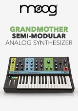 Moog Grandmother Sintetizador Analógico Semimodular